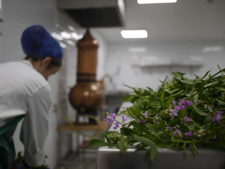 Shanbally Herb Dispensary