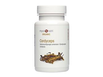 Cordyceps (Ophiocordyceps sinensis) 60 caps